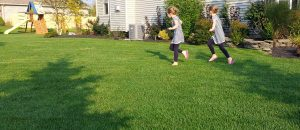 Child safe lawn care in the Buffalo NY area